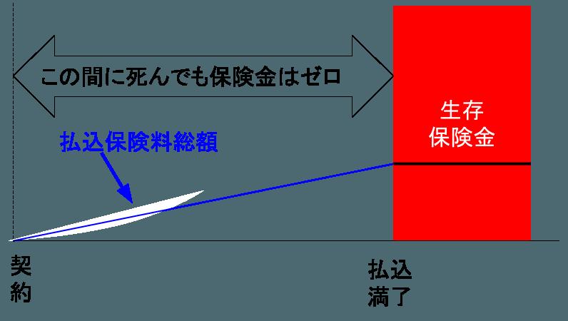 2016-06-06-seizon-hokenkin